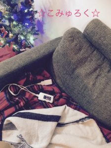 電気膝掛け毛布 画像